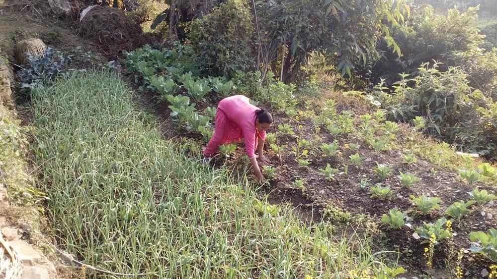 Sita Raivat in haar groentetuin